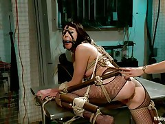Coral aorta is a breasty brunette hair milf who enjoys being aroused whilst she is tied up in bondage devices. She likes having her mouth gagged with a ball as her beautiful domina takes advantage of her position. The hot blonde milf Lorelei Lee likes satisfying her sex slave with a transparent butt plug.